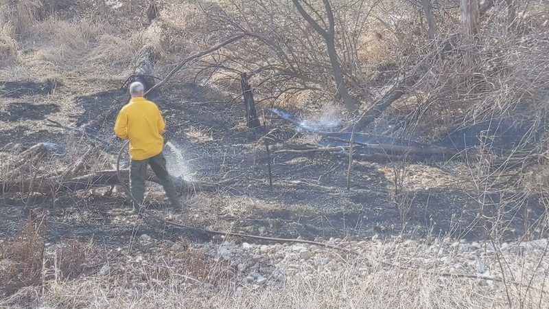 A trash fire spread quickly after wind blew the fire into nearby tall grass.