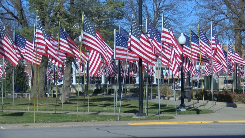 Central Park is adorned with flags on Veteran's Day.
