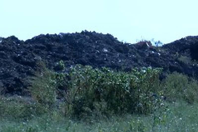 Chamness Composting facility in Eddyville, Iowa.