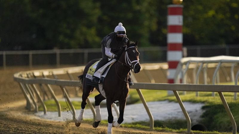 Preakness entrant Rombauer works out during a training session ahead of the Preakness Stakes...