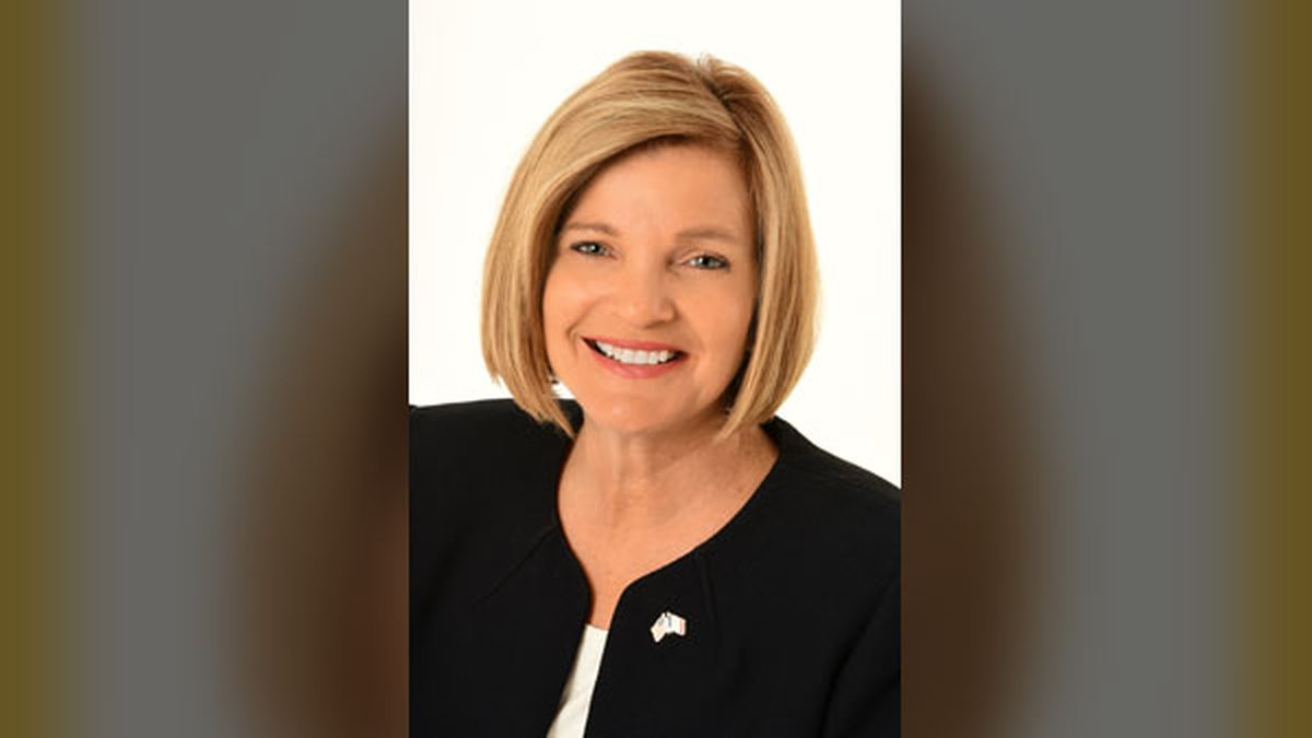 State Senator Liz Mathis announced on Tuesday she will run for Iowa's First Congressional...
