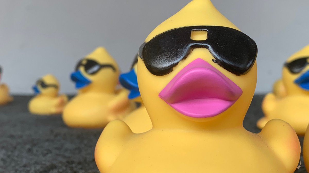 The Ottumwa Duck Races will be Saturday, September 18th